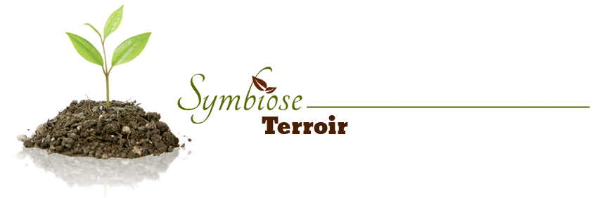 Symbiose terroir